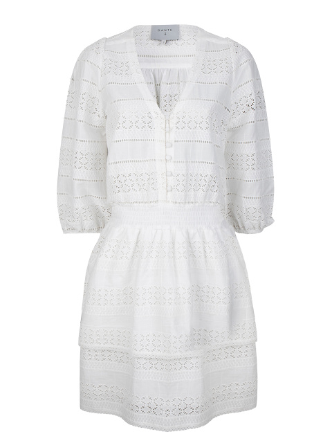 Paltrow embroidered dress